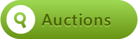 auction services button