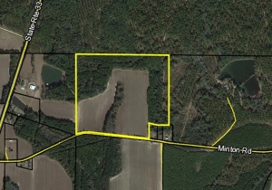 Parcel 26 in Land Lot 82 of 7th Land District, Worth County, GA, 31791
