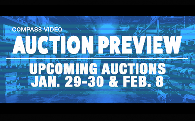 Vehicles and Luxury Goods – Coming Jan. 29-30 and Feb. 8