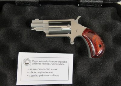 north american arms naa-22ms .22 magnum