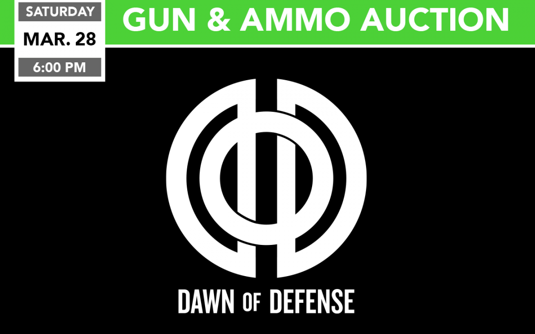 Gun and Ammo Auction