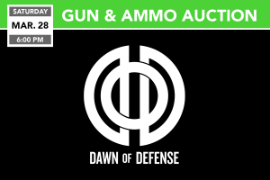 Gun & Ammo Auction 3/28/2020