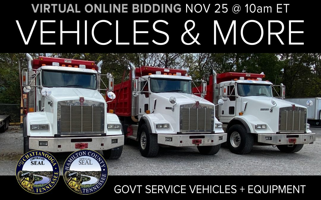 November Monthly Auction Day 1