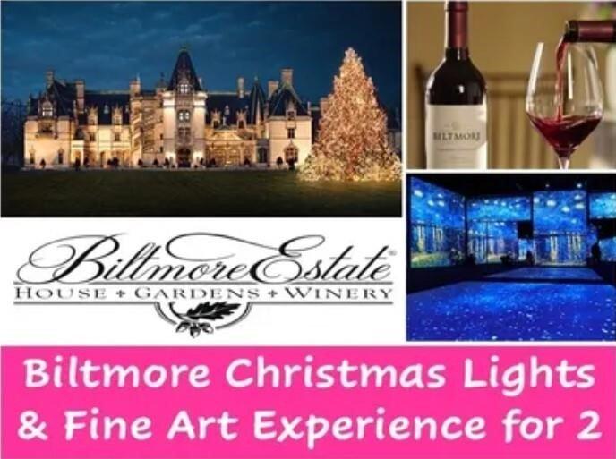 Biltmore Christmas Lights & Fine Art Experience